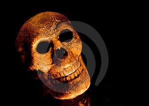 Spooky Skull Head Stock Photography - Image: 1374812