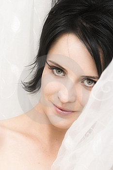 Brunette Bride Royalty Free Stock Photography - Image: 13700487