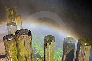Rainbow In A Mist Deep Forest Stock Photo - Image: 13704210
