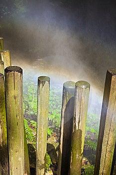 Rainbow In A Mist Deep Forest Stock Photos - Image: 13704223