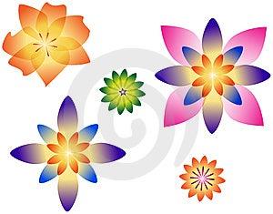 Flowers Stock Image - Image: 13704381