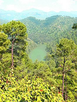 Lake Surrounded By Forest Stock Image - Image: 13732431