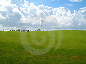 Palm Trees On Luxury Golf Course Stock Image - Image: 13733711