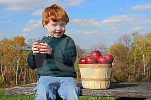 Autumn Delight Stock Photo - Image: 13737110