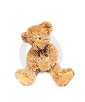 Teddy Bear With Pills Stock Photo - Image: 13738170
