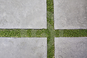 Lawn With Lime Royalty Free Stock Photography - Image: 13741787