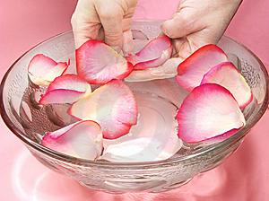 Spa With Rose Petals Royalty Free Stock Photography - Image: 13742537
