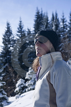 Winter Wonderland Stock Images - Image: 13748414