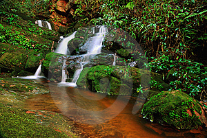 Green Water Fall Royalty Free Stock Photography - Image: 13748477