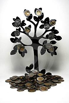 Thai Baht Tree Stock Photos - Image: 13757403