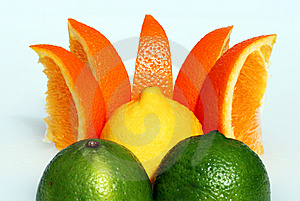Lemon Dawn Stock Photo - Image: 13760050