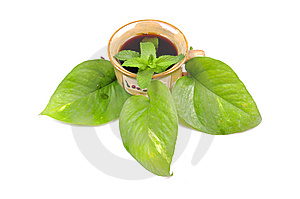 Mint Tea Stock Image - Image: 13760321