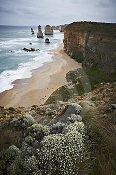 Twelve Apostles On The Great Ocean Road In Austral Royalty Free Stock Photography - Image: 13760467