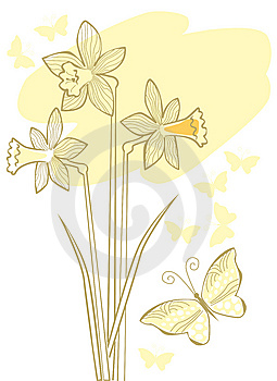Tender Background With Narcissuses Stock Photography - Image: 13760492