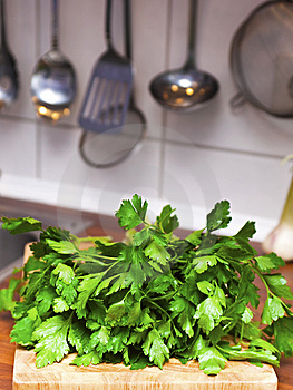 Fresh Parsley Royalty Free Stock Image - Image: 13767016