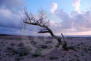 A Marine Sunset Stock Images - Image: 13769344