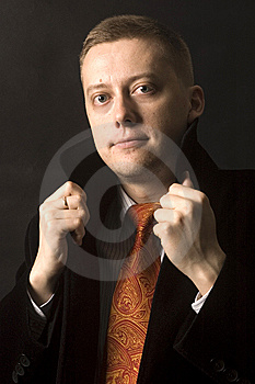 Elegant Young Businessman Stock Images - Image: 13773544