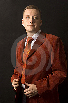 Elegant Young Businessman Royalty Free Stock Photo - Image: 13773575