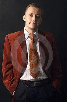 Elegant Young Businessman Stock Image - Image: 13773581