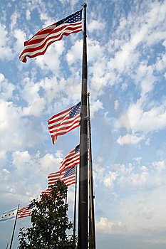 American Flags Royalty Free Stock Photo - Image: 13775445