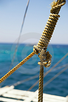 The Sea Knot Royalty Free Stock Photography - Image: 13793777