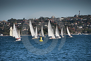Sydney Bay, August 2009 Stock Photo - Image: 13794170