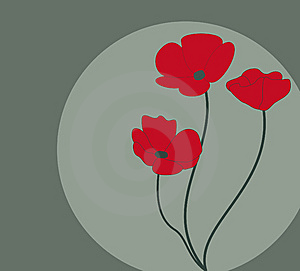 Poppy Flowers Royalty Free Stock Photos - Image: 13796998