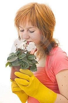 Home Gardening Stock Photo - Image: 13798220