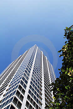 Buildings And Green Trees In Akihabara Stock Image - Image: 13825091