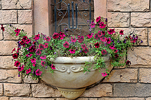 Small Parterre On Building External Wall Royalty Free Stock Images - Image: 13827319