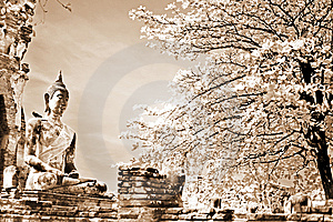 Monuments Of Buddah, Royalty Free Stock Images - Image: 13830139