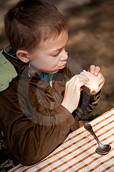 Boy Enjoing The Bred And Butter On The Open Air Stock Photography - Image: 13830482