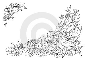 Leaves, Flowers And Feathers Monochrome Stock Photos - Image: 13847213