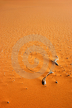 Desert Structure Stock Image - Image: 13852011