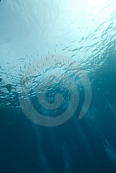 Bubbles And Ocean Surface Stock Images - Image: 13852514