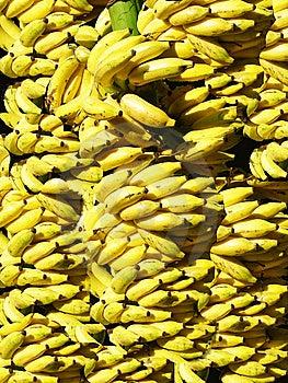 Banana Background Stock Photos - Image: 13858683