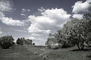 Summer Rural Landscape Royalty Free Stock Images - Image: 13859349