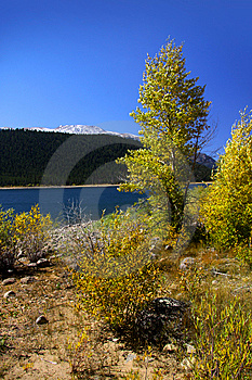 Autumn In Colorado Stock Images - Image: 13862784