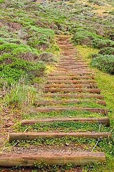 Park Stairs   Stock Image - Image: 13884281