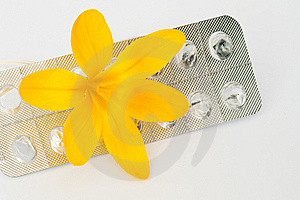 Yellow Crocus On Blister Pack Stock Image - Image: 13885101