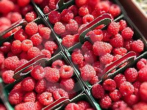 Raspberries Stock Image - Image: 13885381