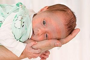 Newborn On His Hand Royalty Free Stock Photo - Image: 13885615