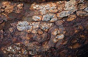Rusty Texture Stock Image - Image: 13894471
