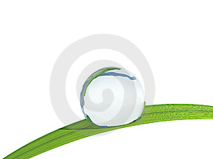 Waterdrop On A Blade Of Grass. Stock Image - Image: 13898201