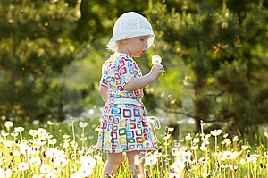 Child With Dandelions Stock Photography - Image: 13899962
