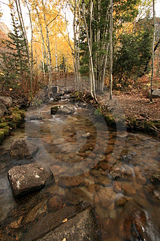 Creek In Fall With Aspens #8 Stock Images - Image: 1391674