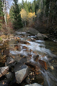 Creek In Fall With Aspens #3 Royalty Free Stock Photo - Image: 1391745