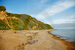 Sea Shore Stock Photography - Image: 13908072