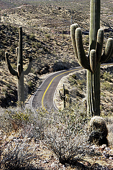 Desert Road 3 Royalty Free Stock Images - Image: 13913589