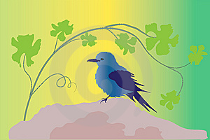 Blue Bird On Rock Royalty Free Stock Photo - Image: 13916095